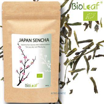 Grüner Tee Japan Sencha - BIO 100  Gramm