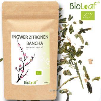 Grüner Tee Ingwer-Zitronen-Bancha / Japan - BIO