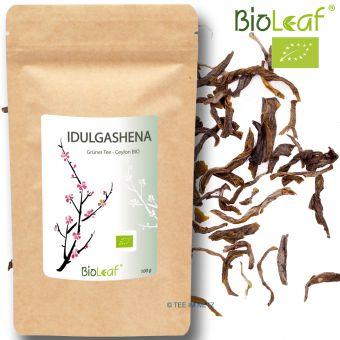Grüner Tee Ceylon Idulgashena BOP - BIO 250 Gramm