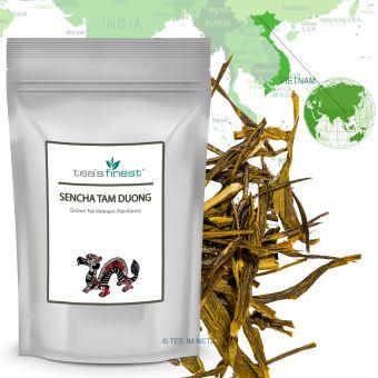 Grüner Tee Rainforest Sencha Tam Duong