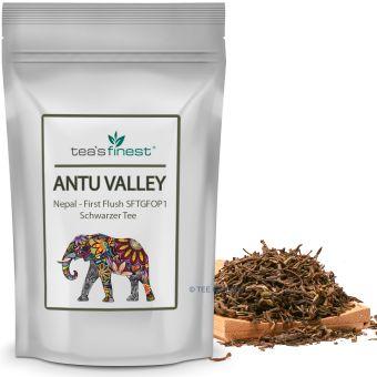 Schwarzer Tee Antu Valley Nepal FF SFTGFOP1