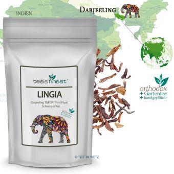 Schwarzer Tee Darjeeling Lingia TGFOP1  First Flush 100 Gramm